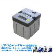 s-battery11